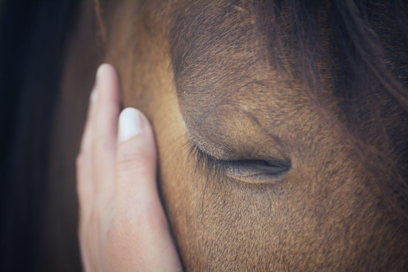Hulp bij ongewenst gedrag en aandoeningen