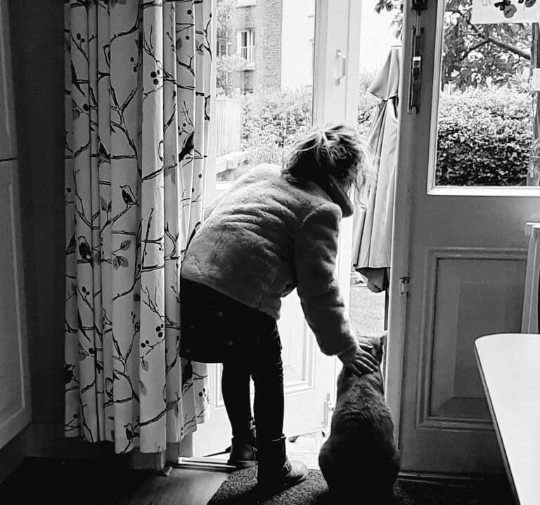 dierentherapie